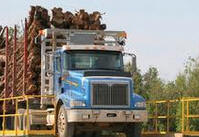 Log Truck Insurance  Olympia, Aberdeen, Grays Harbor, WA
